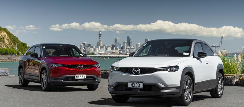 New Zealand Company Vehicle June 2021